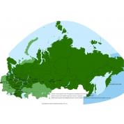 Карта Garmin Дороги России. РФ. ТОПО.