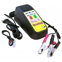 Автоматическое зарядное устройство Cramer AccuGard