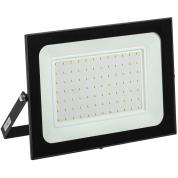 Прожектор светодиодный IEK СДО 06-100 (IP65, 6500K, черный)