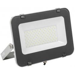 Прожектор светодиодный IEK СДО 07-100 (IP65, серый)